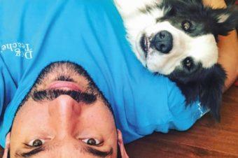 Consejos para pasar la cuarentena con mascotas